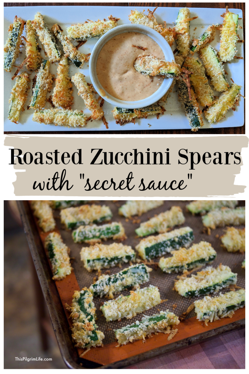 "These crispy roasted zucchini spears with a ""secret sauce"" for dipping are addictive! The simple parmesan and panko breading keep this tasty dish easy and healthy!"