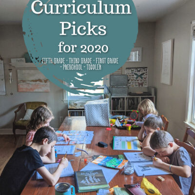 Our Curriculum Picks for 2020