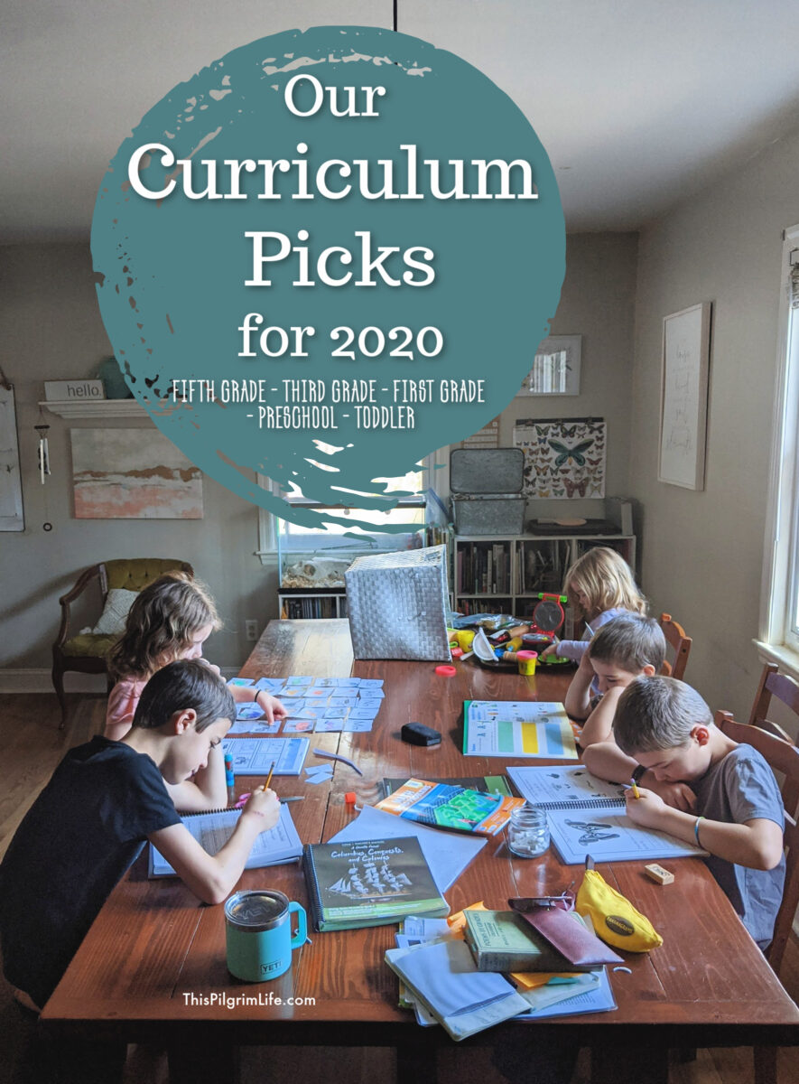 Our homeschool curriculum and book choices for three elementary age children, a preschooler, and a toddler too! Plus, even more tips and tricks from an experienced homeschool family.