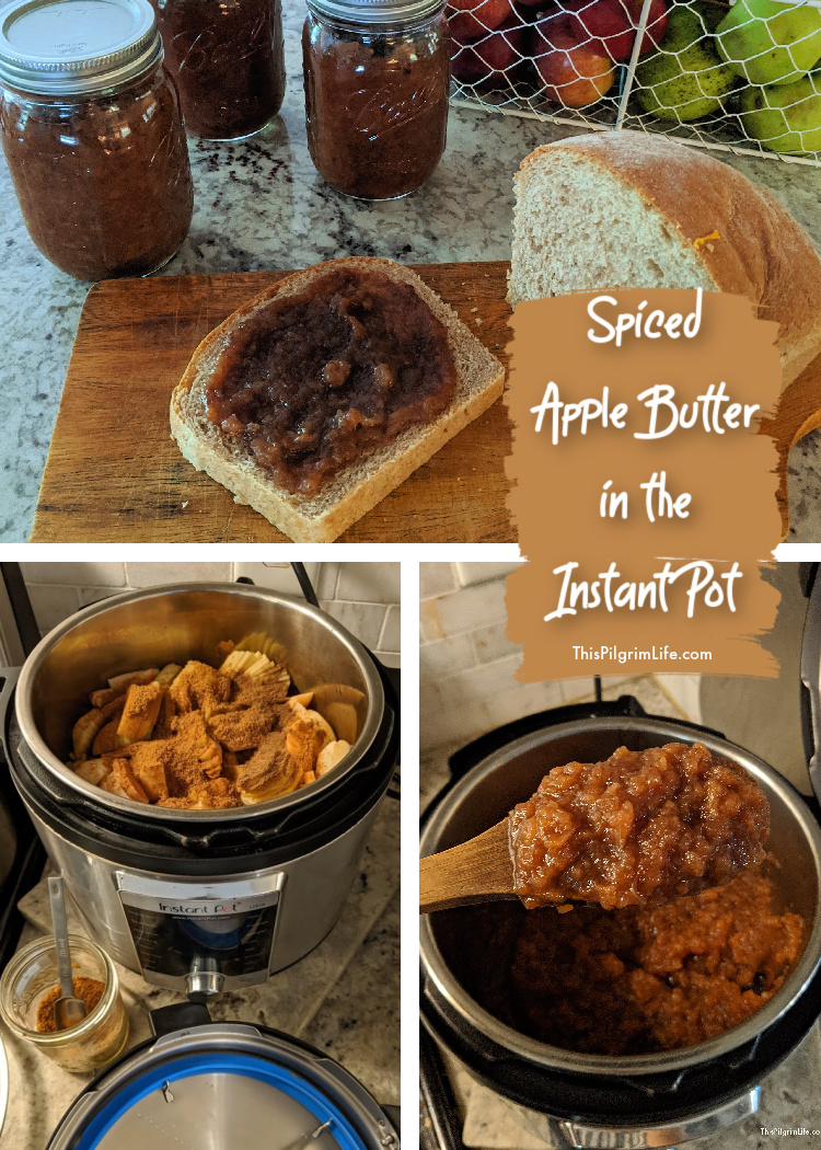 Spiced apple butter easily made in the Instant Pot with just enough sweetness! So delicious spread on bread, as a topping for oatmeal, and so much more. This recipe also cans easily for year-long preserving!