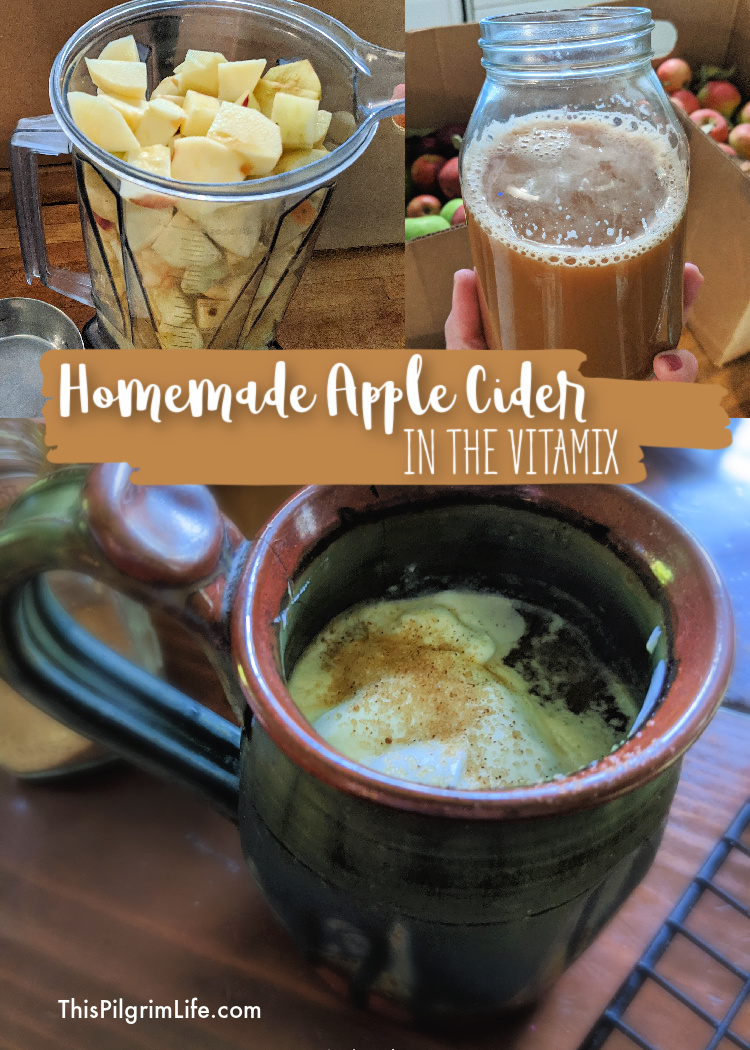 Homemade apple cider is so easy to make in a Vitamix! We love it cold or warmed up with fresh whipped cream! The pulp can also be added to homemade applesauce, or used to make apple hand pies.