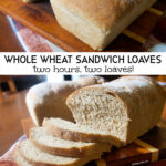 Soft and tender whole wheat sandwich loaves that can be ready in just two hours!