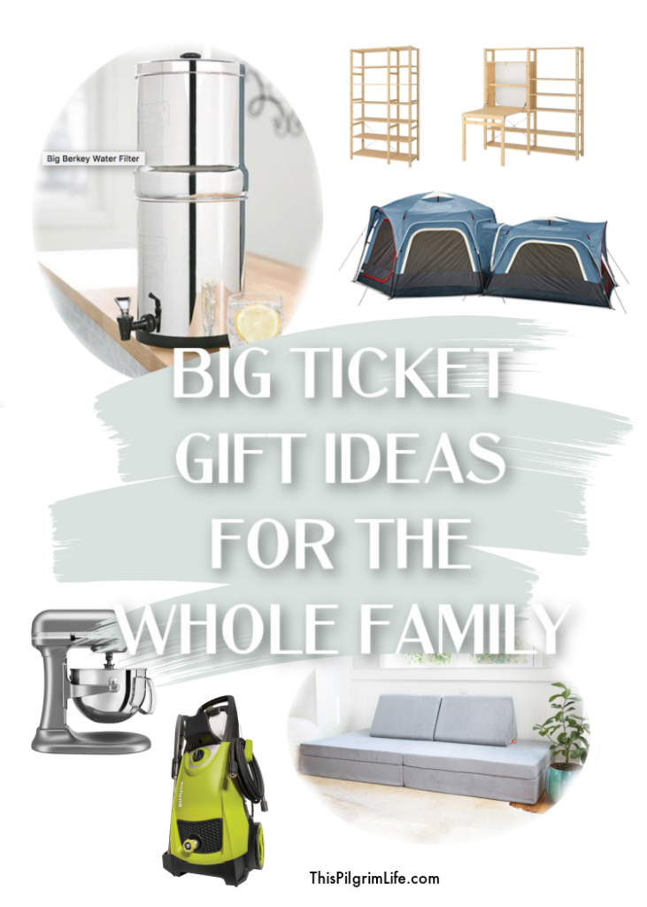 Take advantage of sales and a season of generosity to shop for big ticket gifts for your family!
