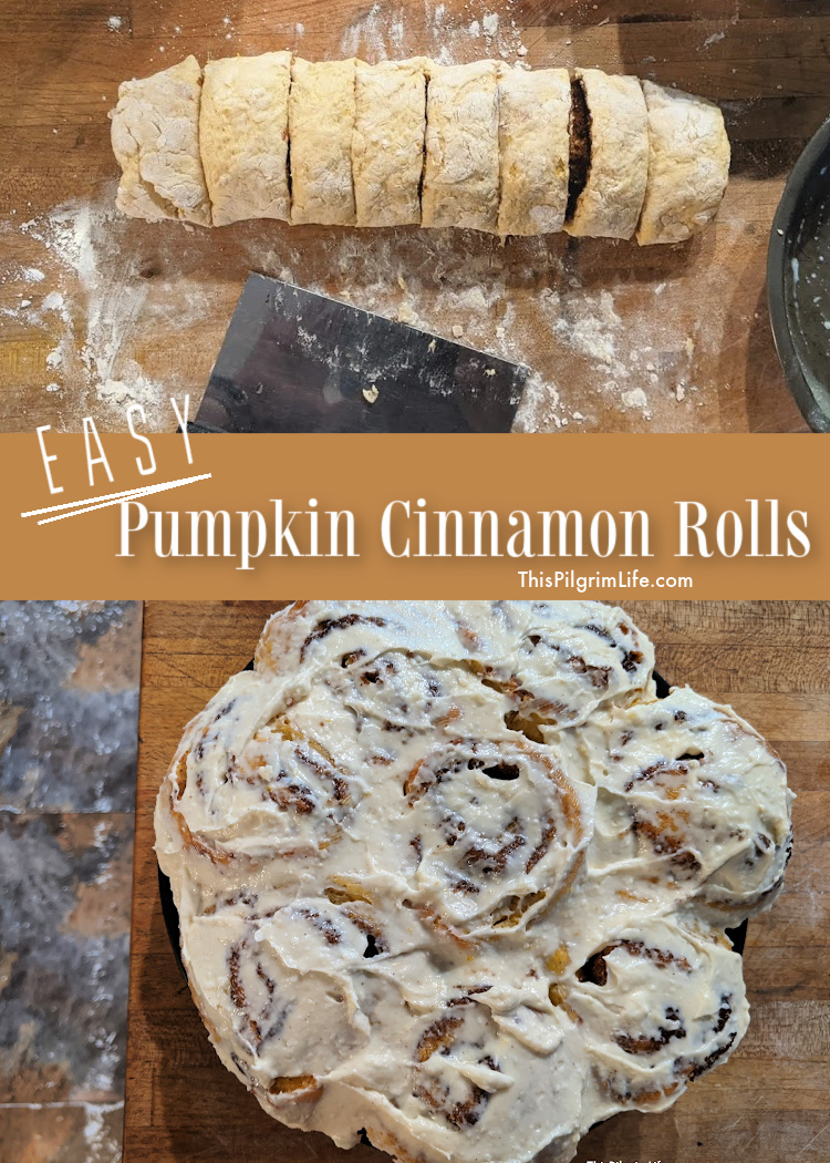 These decadent pumpkin cinnamon rolls are so quick and easy to make (from scratch!) and are a perfect seasonal treat!