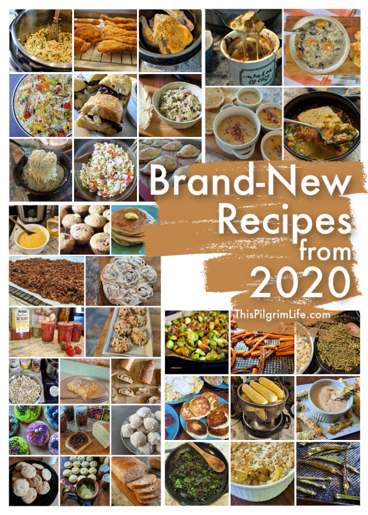 Over thirty new recipes made their way to the blog in 2020! Check out the new main dishes, sides, desserts, and more-- plus what were the most popular recipes all year too!