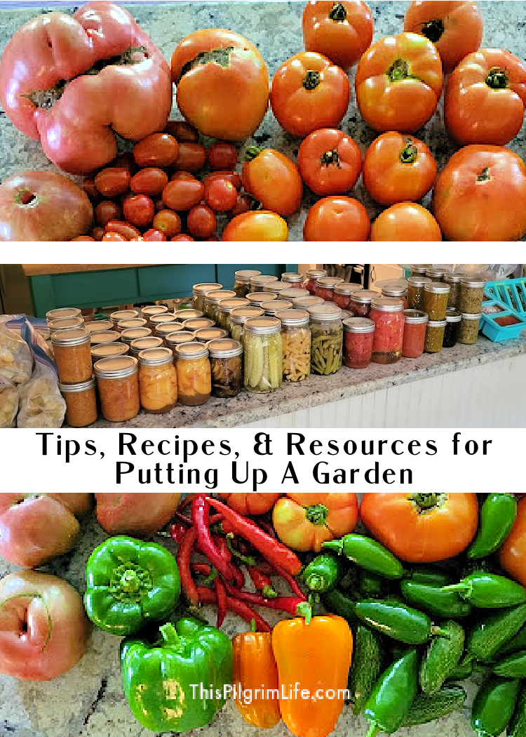 Recipes and recommendations for canning, freezing, and preserving vegetables and fruit.